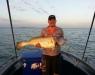maljewfish